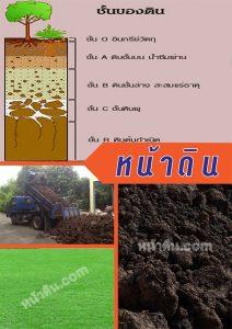 หน้าดิน ถมหน้าดินปลูกต้นไม้