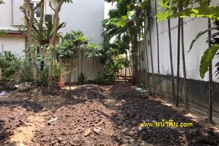 แปลงผักสวนหลัง หลังจากการถมด้วยหน้าดินเสร็จแล้ว