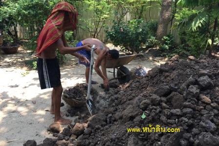 หน้าดิน ดินปลูกต้นไม้ ทำแปลงผักสวนครัว