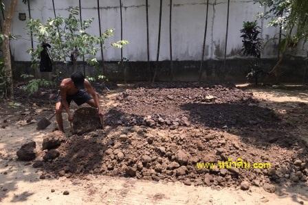 หน้าดิน ดินปลูกต้นไม้